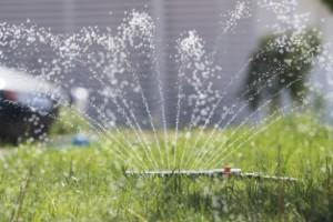 Budskapet: var sparsam med vattnet