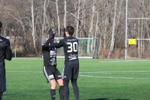 Fotbollförbundet utreder Fanna