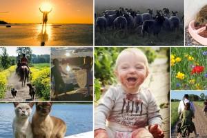 Skicka in dina finaste sommarbilder – var med och tävla om fina priser