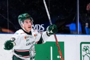 Norrbottningen drömmer om ett samtal från Luleå Hockey
