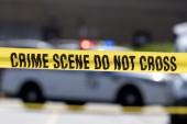 Flera skadade i skottlossning i USA