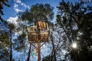 Ännu en trädkoja i Blodstensskogen - aktivisterna vägrar ge upp