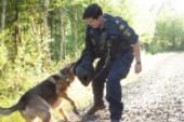 Se hur vår reporter försöker springa ifrån polishunden