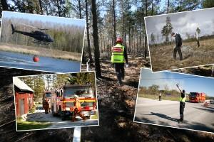 """Fem år sedan skogsbranden i Vänge – Thomsson: """"Jag tänkte bara, Herregud!"""""""