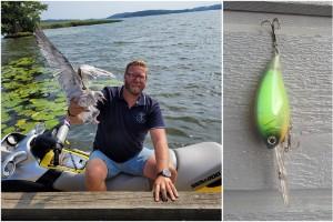 """Robert räddade måsungen – hade fastnat i fiskedrag: """"Huvudet var under ytan"""""""