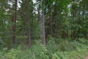 Fastigheter i Lojsta sålda till ny ägare - priset: 475000 kronor