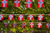 Norsk protektionism gynnar Sverige