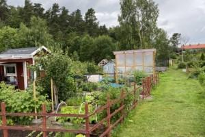 Kommunen: Studsmattorna inte förenliga med kontrakten