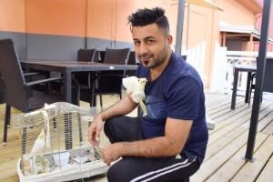 Nymfparakiten Aza är hemma - efter fem dagar på rymmen
