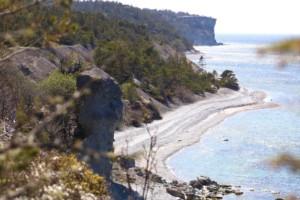 5 måsten att uppleva på Gotland i vår