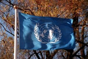Ny FN-rapport visar vägen mot en grön framtid