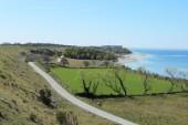 Åk den vackra kustvägen ner till Hoburgen