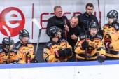Tre nya sjukdomsfall i Luleå Hockey