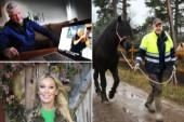 """Mats kärleksäventyr i tv: """"Jag är fortfarande singel"""""""