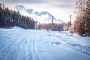 Spanskt gödsel ska ge 500 permanenta jobb i Norrbotten