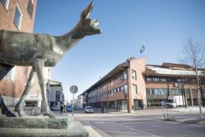 Kommunen ska inte utreda egen osund konkurrens