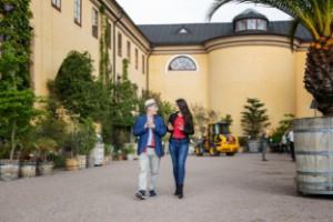 Music in the Garden – Pontviks drömprojekt