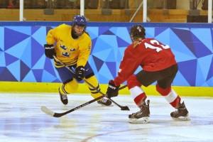 Gjensidige sponsrar flera svenska sporter