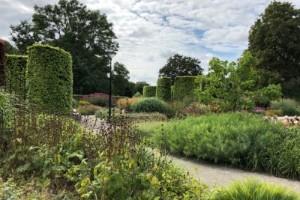 Quiz: Hur mycket kan du om Enköpings parker?