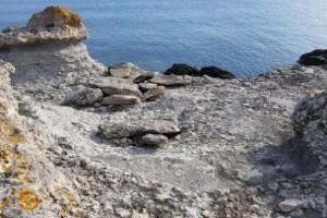 """Fossiler bortknackade från klippor: """"Finns inga kvar"""""""