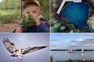 BILDEXTRA: Här är läsarnas sommarbilder från vecka 33