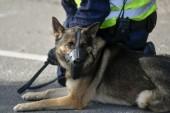 Tre anhållna efter knarktillslag i Hälsingland