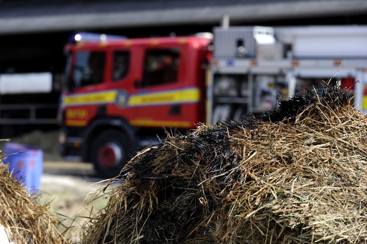 Unga flickor greps för flera gräsbränder