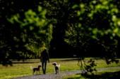 Låt oss värna vår gröna miljö i Linköping