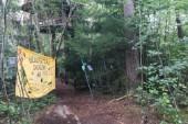 Byggplanerna i Blodstensskogen - detta har hänt