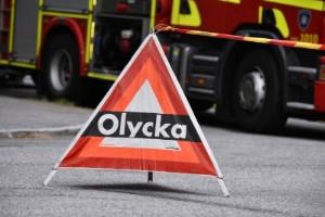 Larmet: Personbil krockade med älg