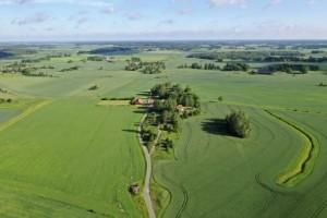 Vill underlätta företagande på landsbygden