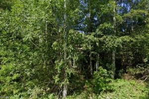 54 kvadratmeter stort hus i Lövstabruk sålt till ny ägare