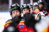 Ligan pausas – Karvinen kan återvända till Luleå Hockey