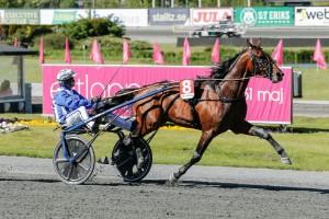 Ecurie D första hästen i Elitloppet
