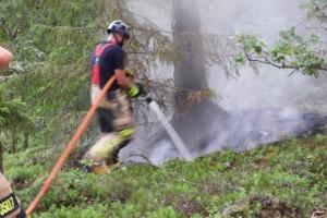 Gammalt blixtnedslag tros ha orsakat skogsbrand