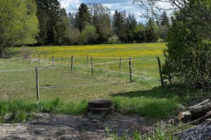 Beslutet för vatten till Enköpings Brukshundklubb
