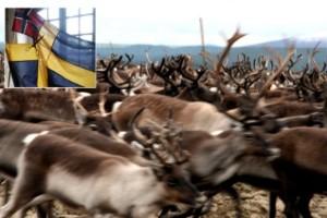 Konflikten trappas upp: Norge hotar med tvångsåtgärder