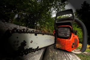 Sex motorsågar försvann med tjuven