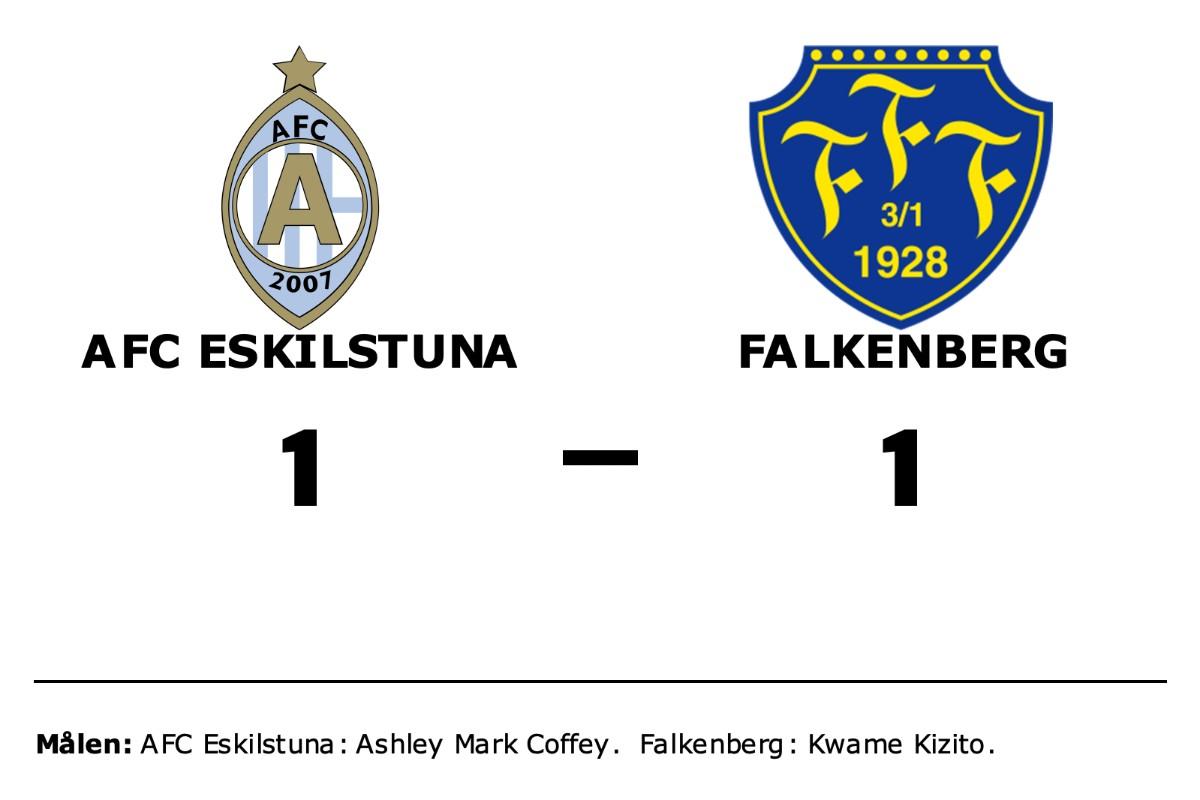 AFC Eskilstuna och Falkenberg delade på poängen