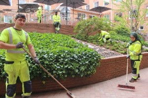 Misskött innergård vårdas till kommunhusets jubileum