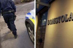 Misstänkt serieblottare åtalad – igen