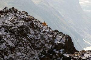 Tufft arbete: Lantmäteriet ser över gränsen mot Norge – kan behöva hjälp av klättrare