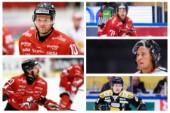 Jesper Samuelsson, Marcus Eriksson, Christopher Fish, Filip Cruseman och Alexander Falk. I den kvintetten finner vi nog Hästens tre kaptener denna säsong.