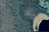Nya ägarna ärver skogsmarken på Överkalixvägen 35 i Korpilombolo