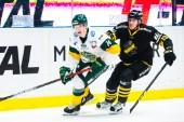 Piteå Hockey värvar back från Björklöven