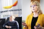 """Gotland klättrar på årliga rankningen – """"Det är avgörande för Gotlands utveckling"""""""
