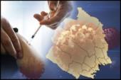 Coronaläget: Ytterligare två döda med covid • 41 vårdas på sjukhus