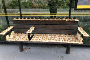 Busskursmysteriet – vem täckte bänk i bröd och bullar?