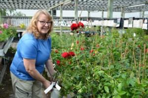 """Intresset för trädgård fortsätter öka • Odlingsboomen gynnar näringslivet • """"Stor efterfrågan på framförallt ätbara saker att plantera"""""""