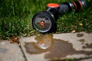 Allt fler kommuner utfärdar bevattningsförbud